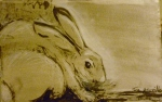 Tea Preville - 2003 - Rabbit II - ink - Deb Peabody-Thompson Workshop