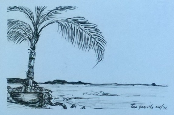 Tea Preville,Punta Mita II, ink on paper. 6x8. 2015