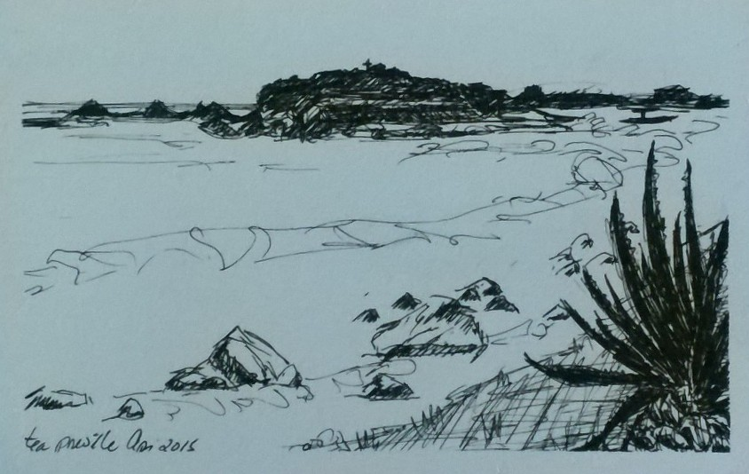 Tea Preville,Punta Mita III, ink on paper. 6x8. 2015